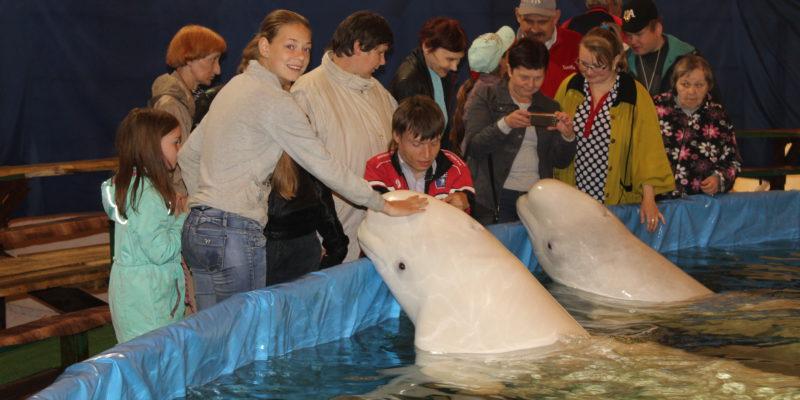 Поездка в дельфинарий г. Петрозводск июнь 2018г.